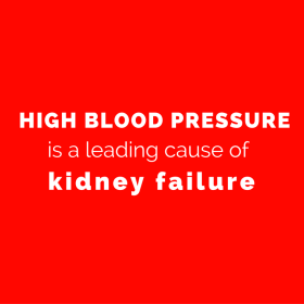 High blood pressure is one of the leading causes of kidney failure (1)